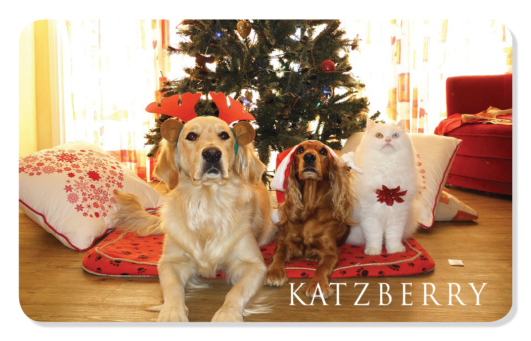 Holiday eCard with 2 dogs and a cat