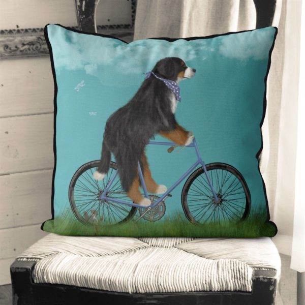 Bernese Dog on bicycle with sky background