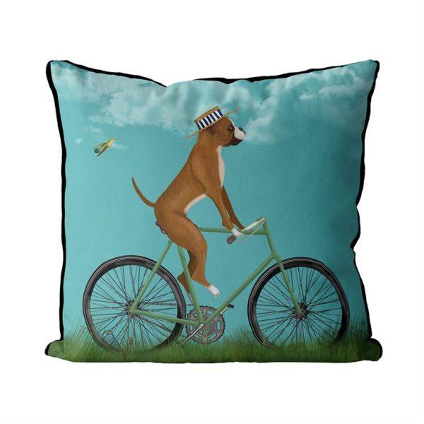 Boxer on bike pillow sky background