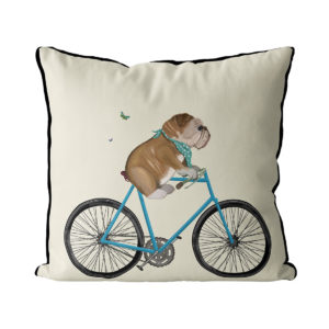 English bulldog on bicycle cream color