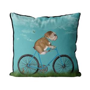 English Bulldog on Bicycle sky