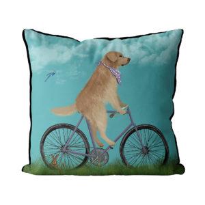 Golden Retriever on bike pillow in Sky