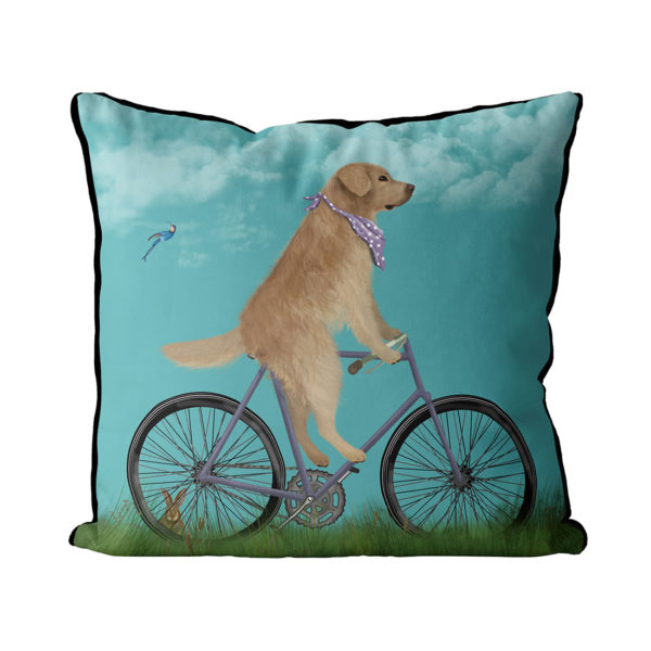 Golden Retriever on bike pillow in Sky